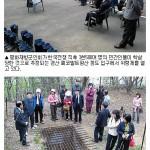 코발트광산 학살관련_신문기사(매일신문)